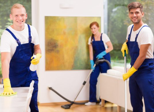 Cleaners cleaning modern apartment