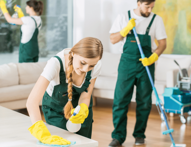 green cleaners (1)